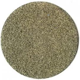HE3355 flocage fibres herbes d'hiver